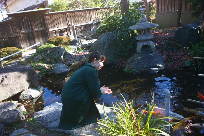 壽丸屋敷の池