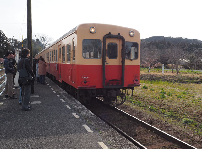 satoyama_tour_report17