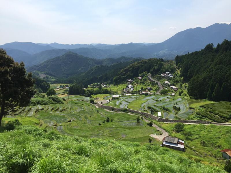 小阪の棚田
