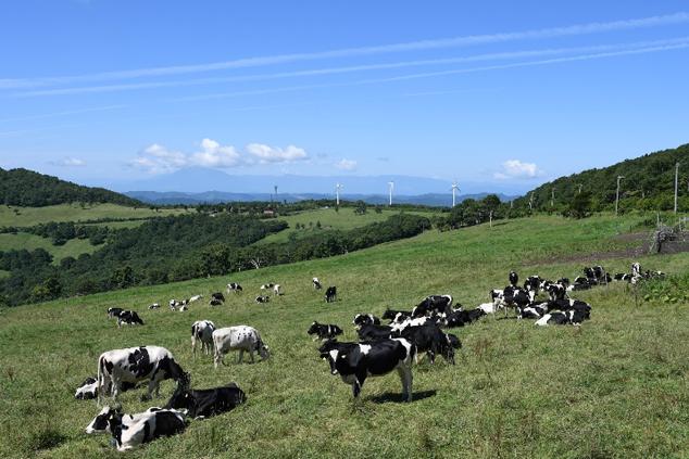 葛巻の基幹産業は酪農