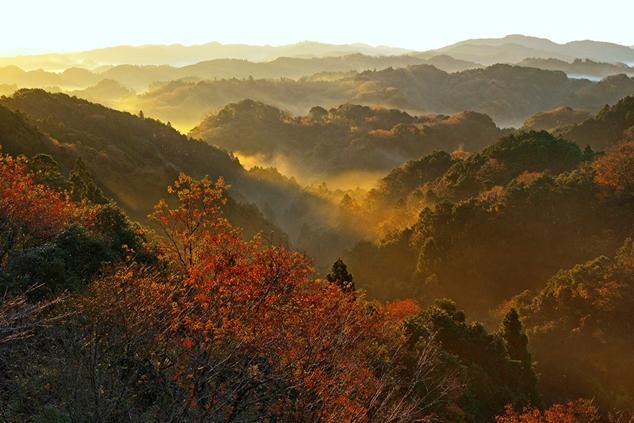 大福山からの眺め