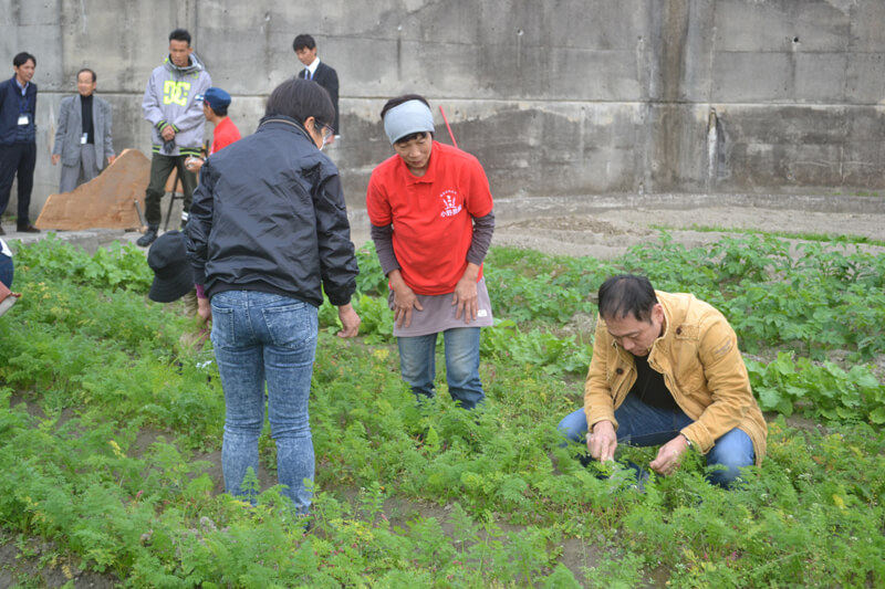 小野農園 収穫体験