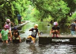 【イベント情報提供】(三島市移住ツアー)※街なかを流れる源兵衛川(2枚目)
