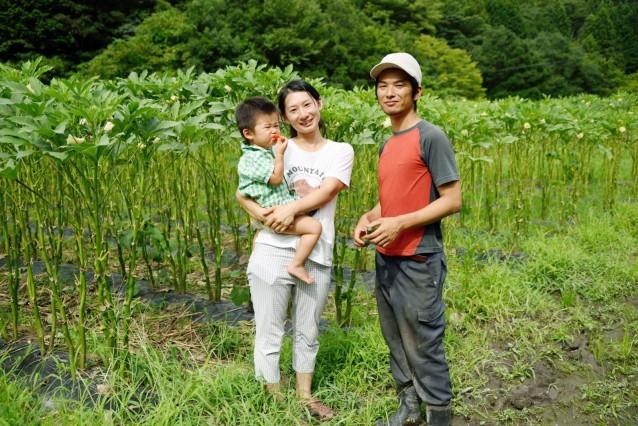 farmroots2