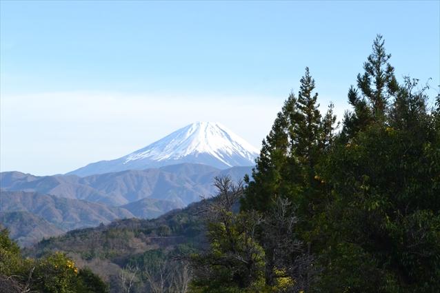fujikawacho02