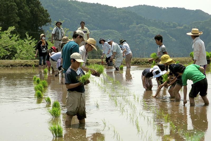 農業体験も星野さんが目指す教育の一つ