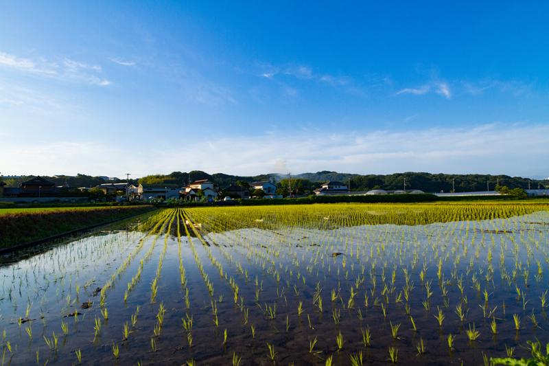 神戸市西区の農村地域