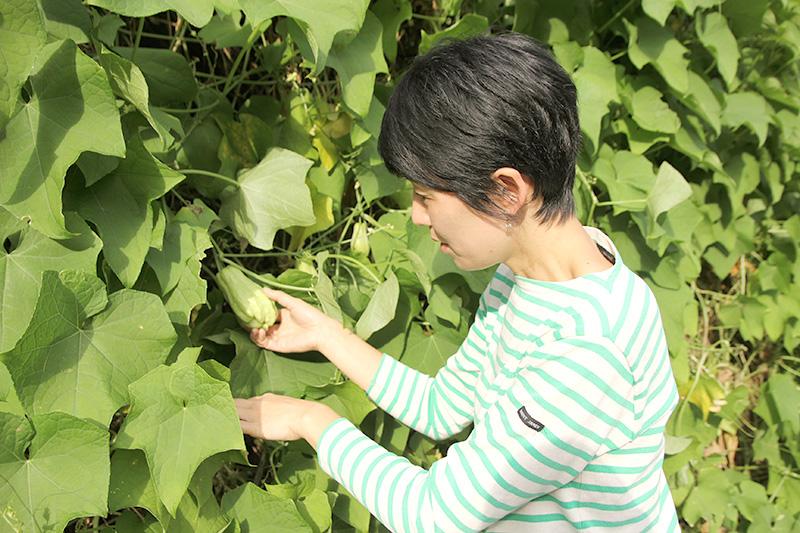野菜を収穫する鳥山さん