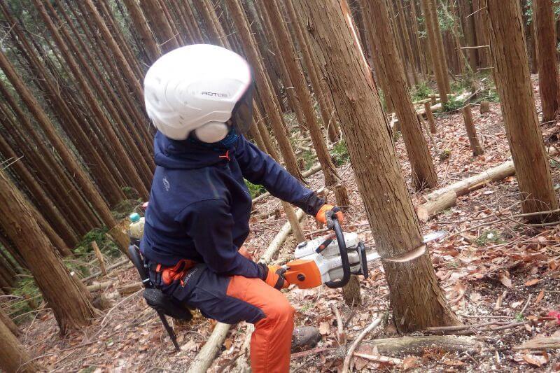 チェーンソーを使い機を伐採する作業