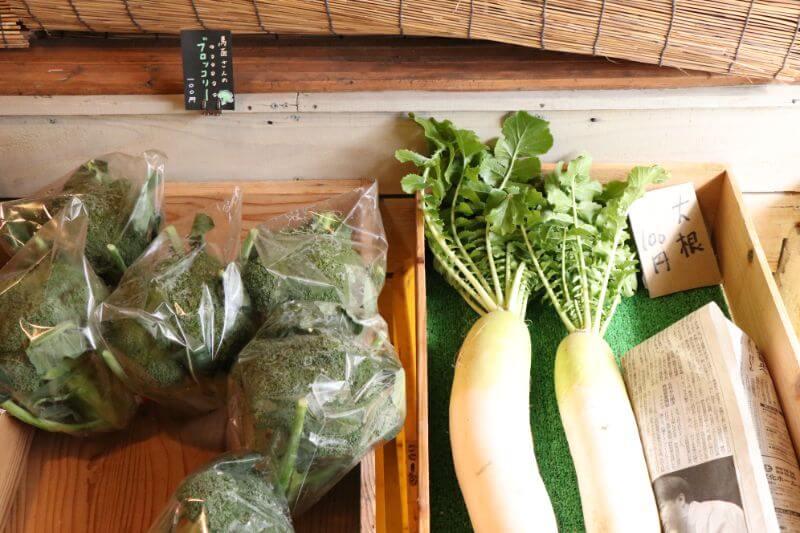 地元で採れた野菜