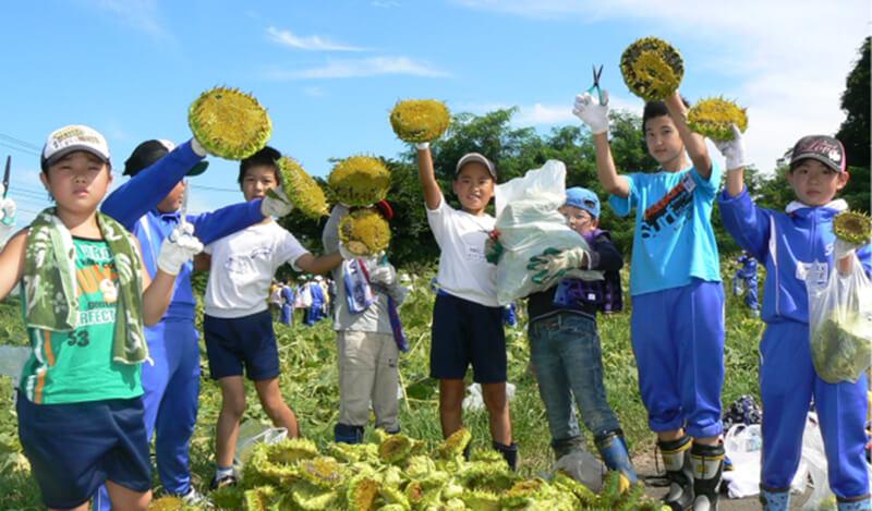 子どもたちと向日葵