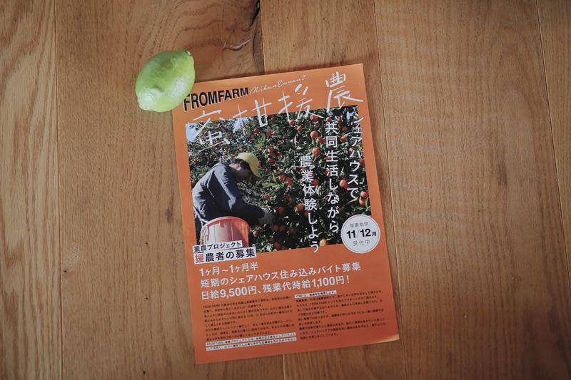蜜柑援農チラシ