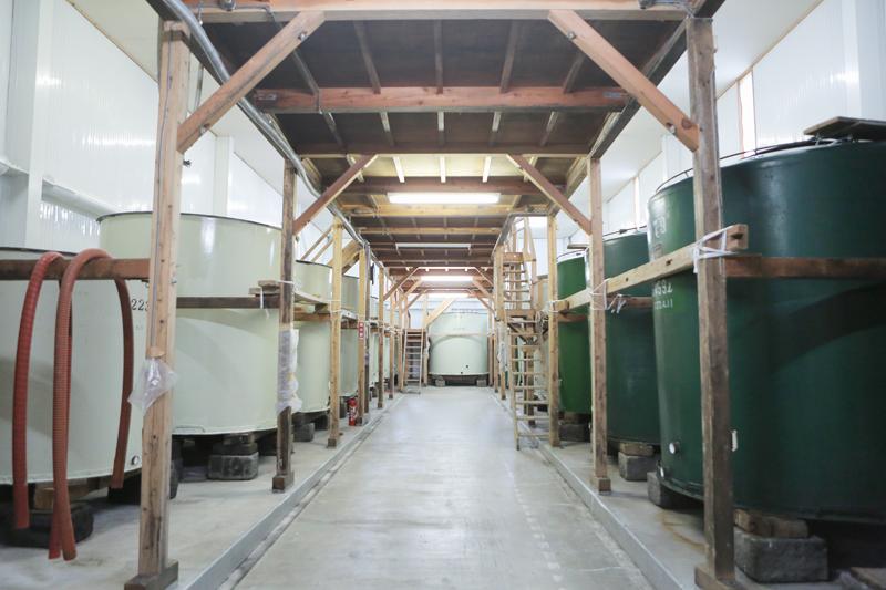 ここで日本酒が造られている