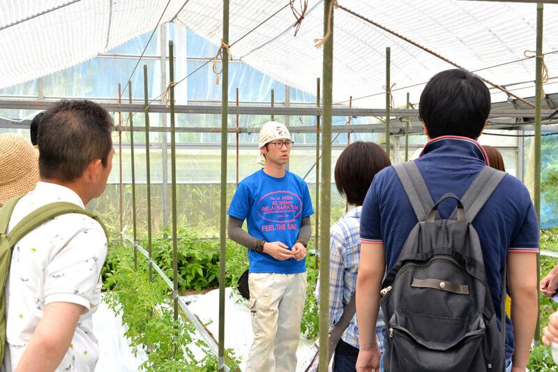 有機栽培のトマト