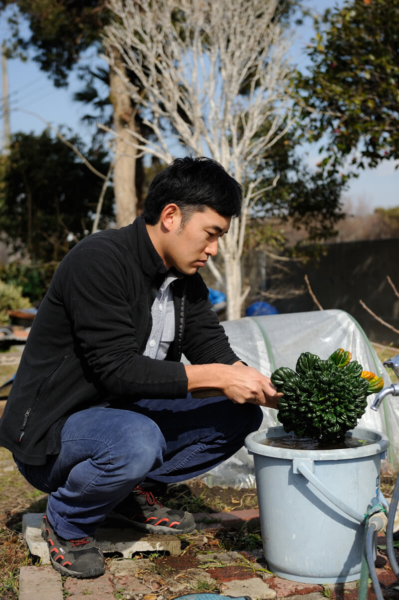 野菜を洗う土屋さん