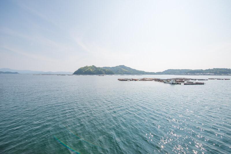 開放的な海を一望できる