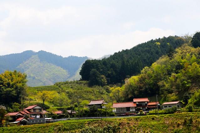 yoshika_0_r